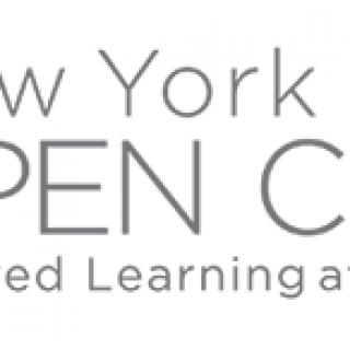 New York Open Center logo