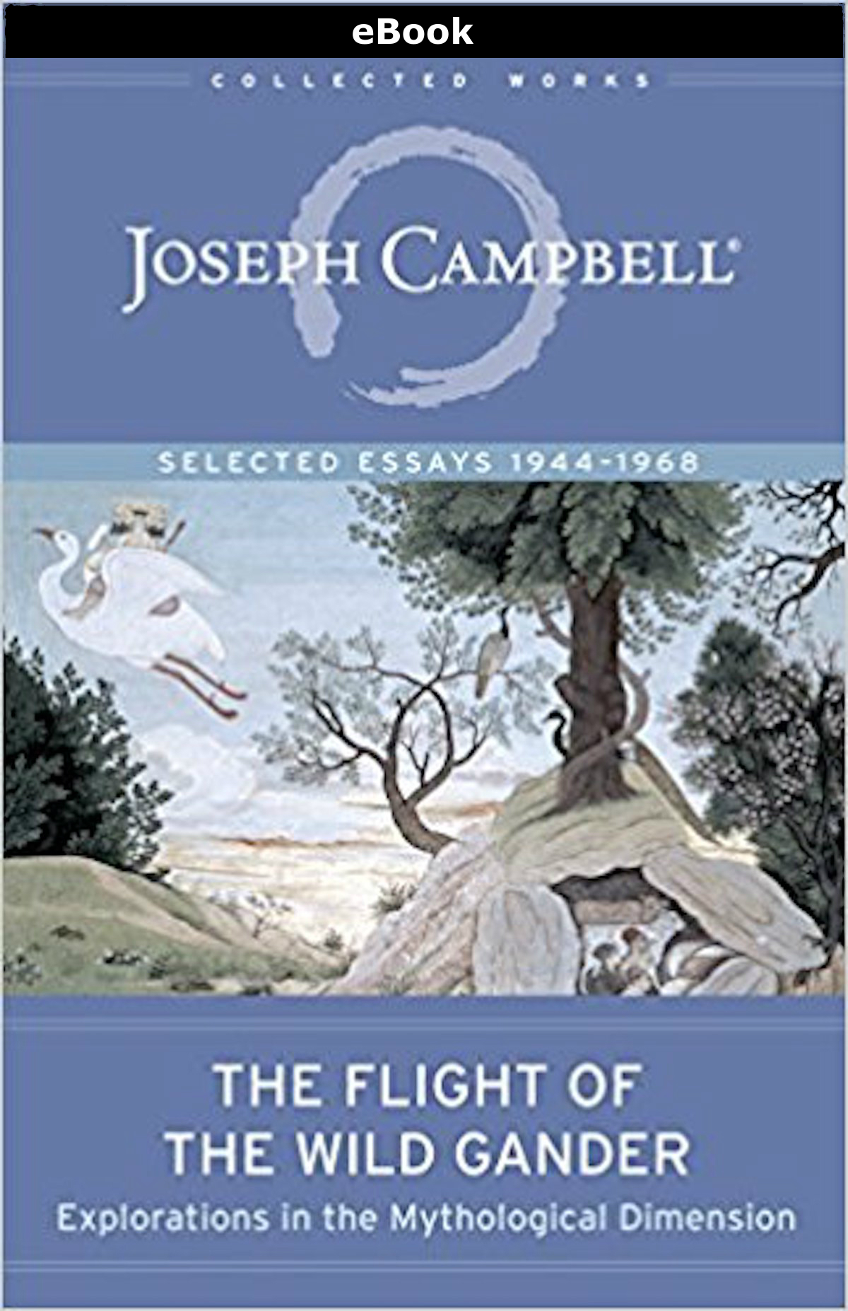 eBook: The Flight of the Wild Gander